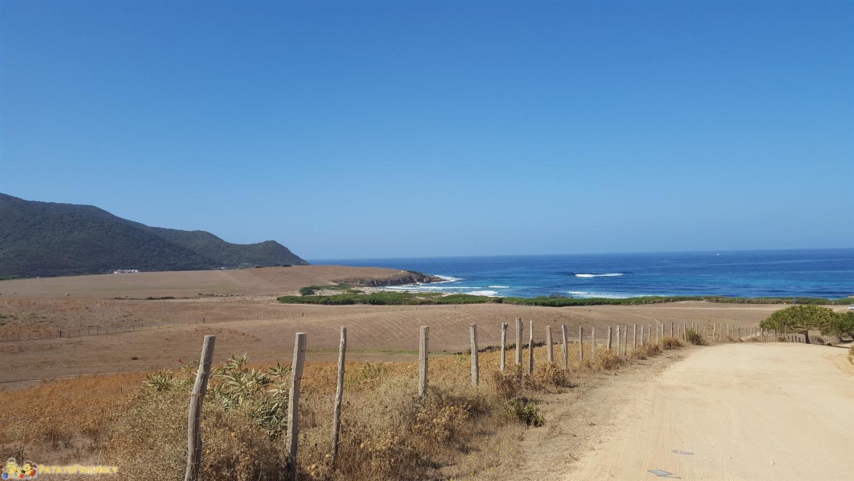 [cml_media_alt id='8417']La strada sterrata che conduce alla spiaggia di Capo di Feno[/cml_media_alt]
