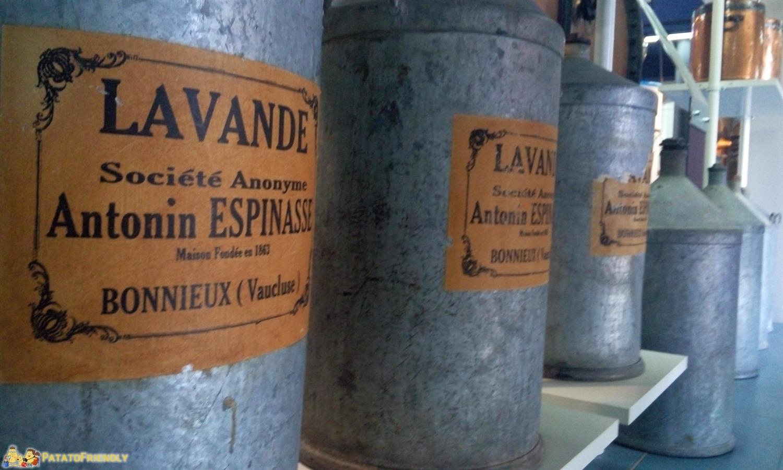 [cml_media_alt id='8654']Il Museo della Lavanda di Coustellet[/cml_media_alt]