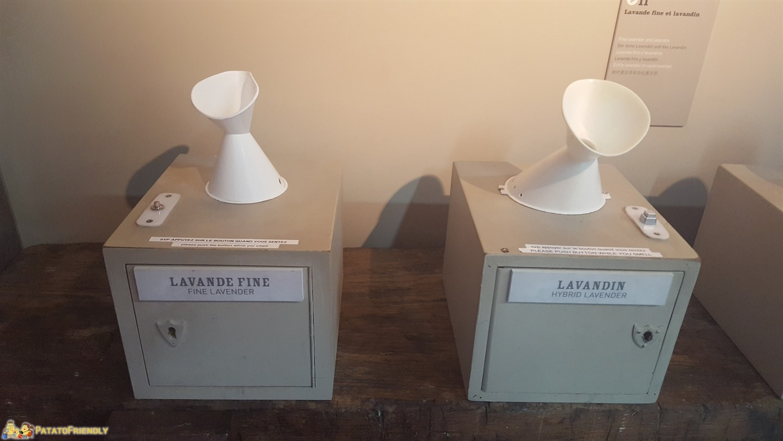 Il Museo della Lavanda di Coustellet - I distributori di essenza per confrontare il profumo della lavanda fine con la lavandina