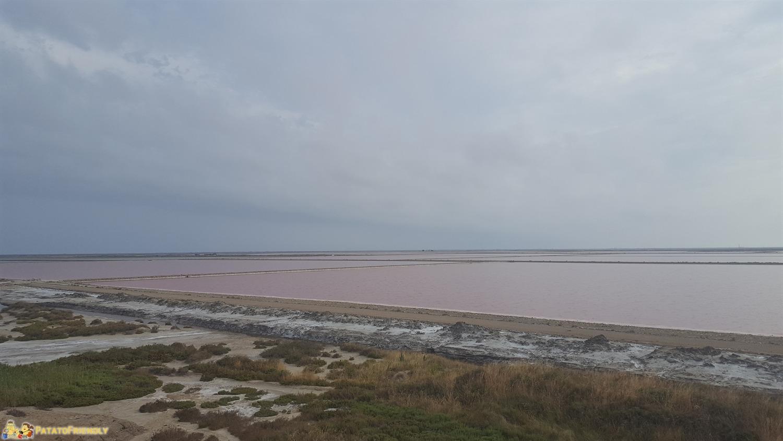 Itinerario in Camargue con bambini - Les Salin di Giraud con il sale rosa