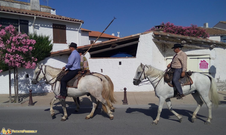 [cml_media_alt id='8732']I cavalieri sui loro cavalli bianchi della Camargue[/cml_media_alt]