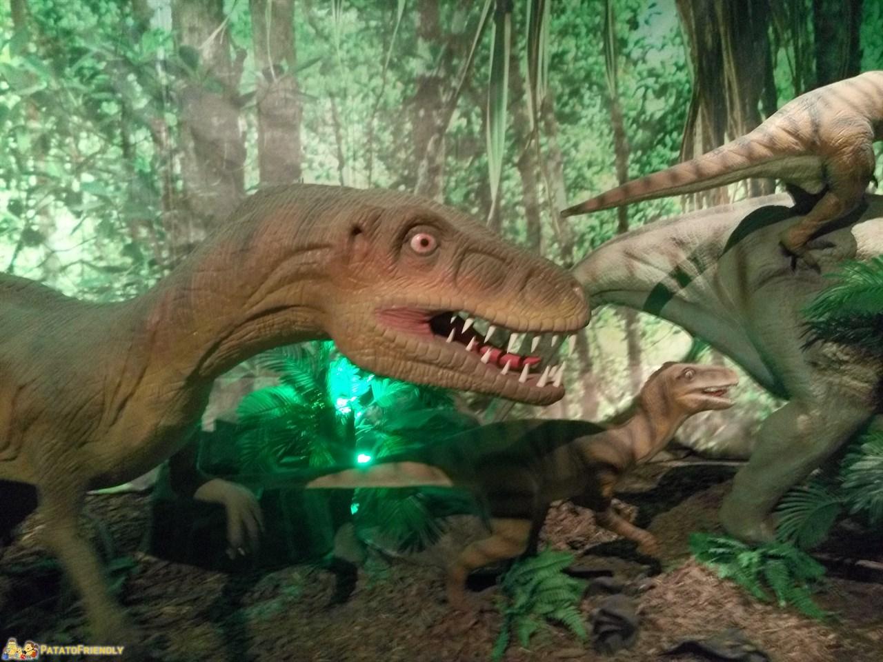 [cml_media_alt id='9543']Dinosaurs Live - La mostra dei dinosauri a Torino[/cml_media_alt]
