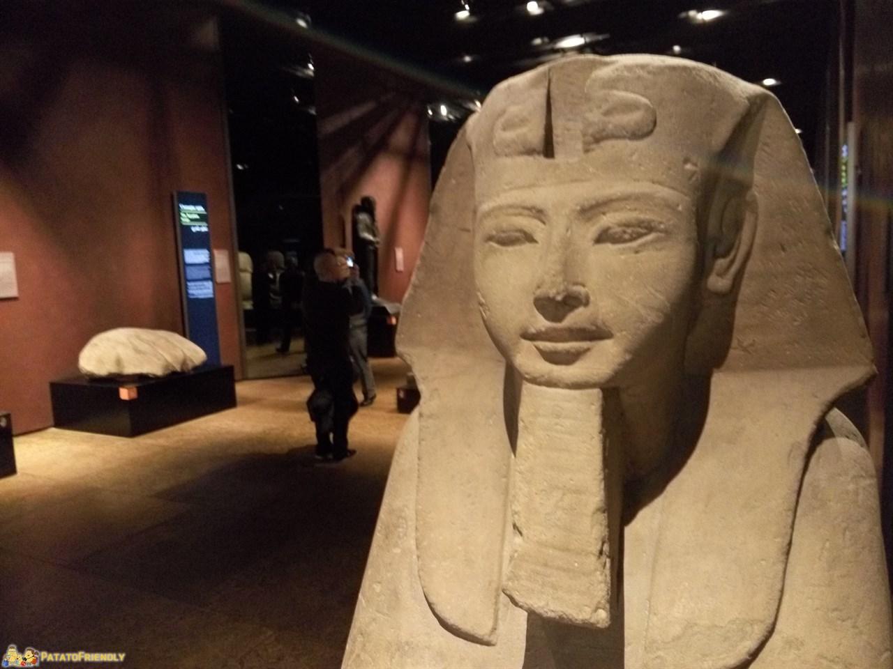 I Musei di Torino per i bambini - Il Museo Egizio