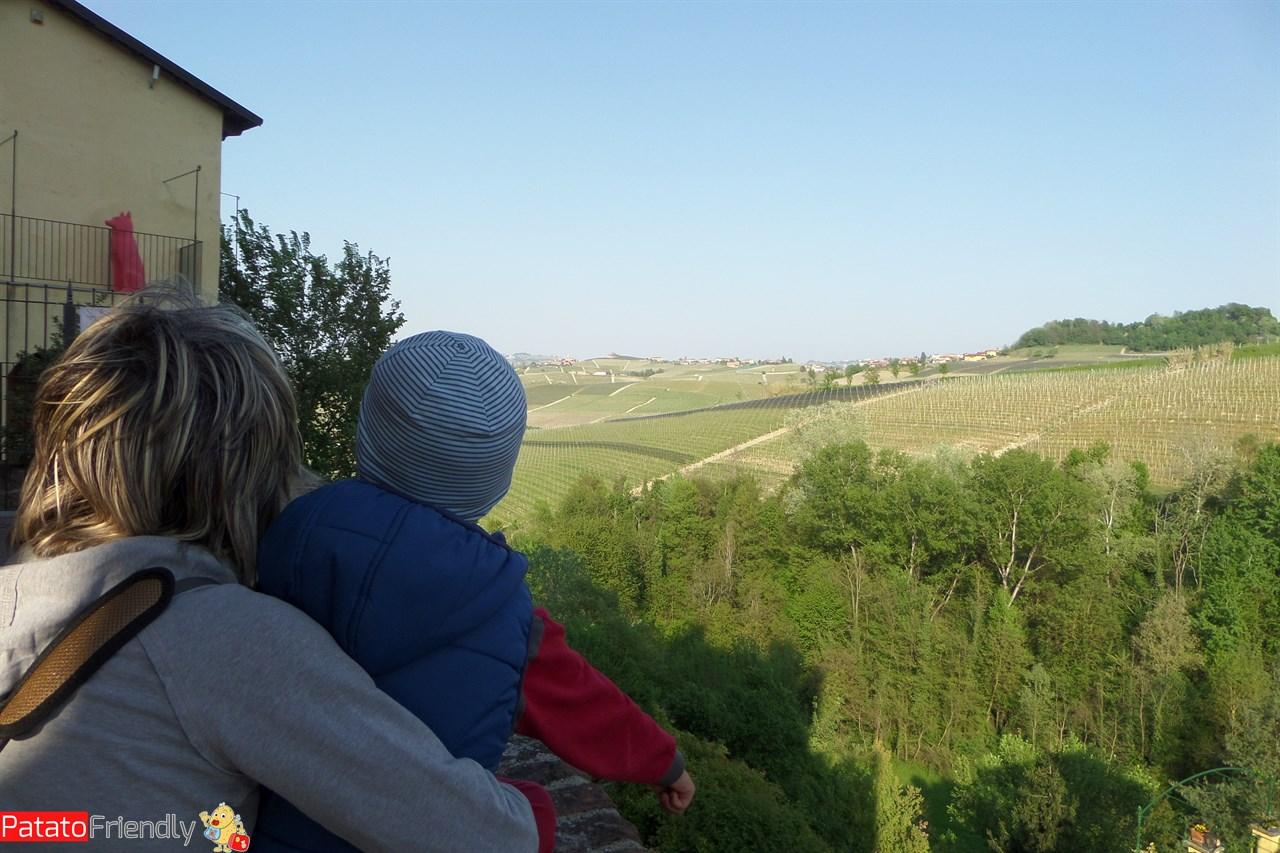 Barolo - Vista sui vigneti dal castello