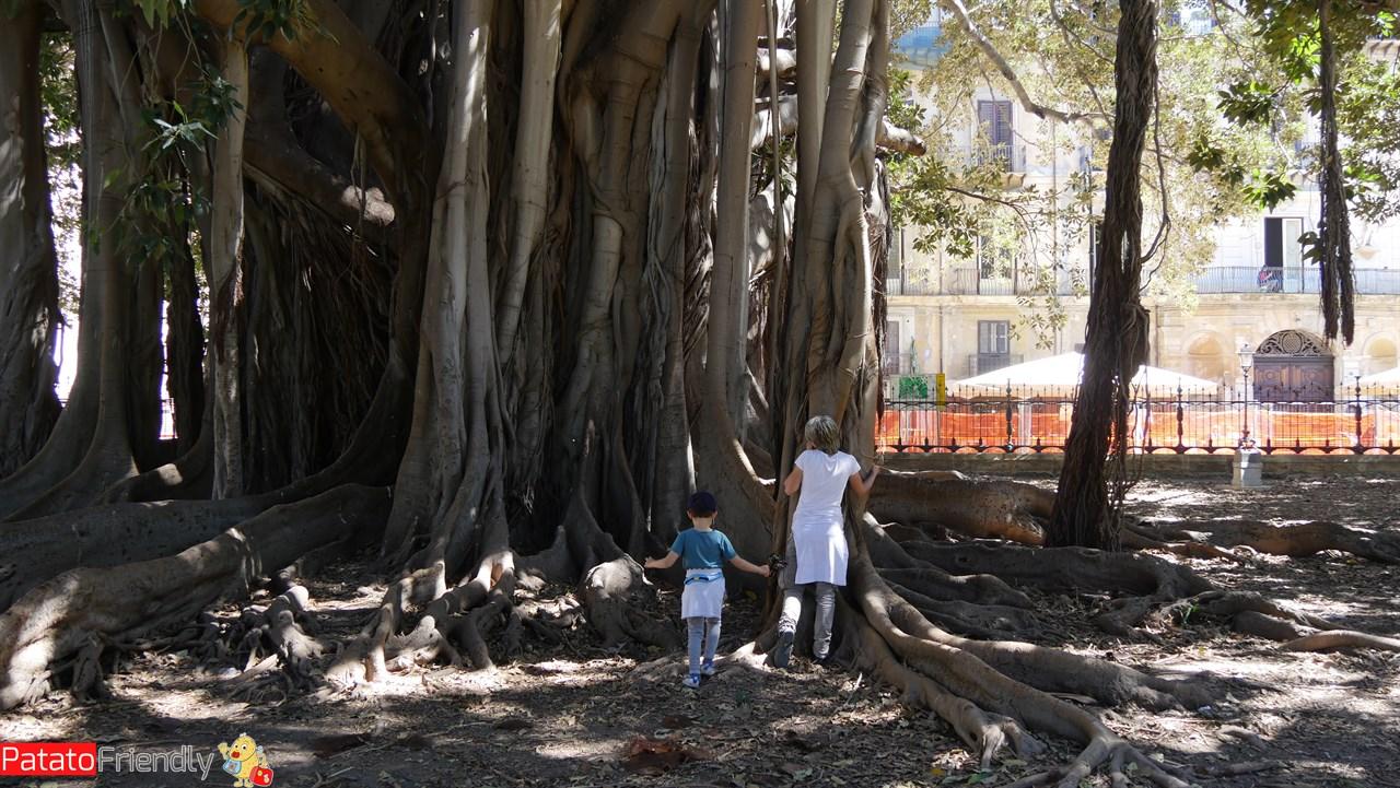 Cosa vedere a Palermo - Il parco di Villa Garibaldi con i suoi alberi secolari