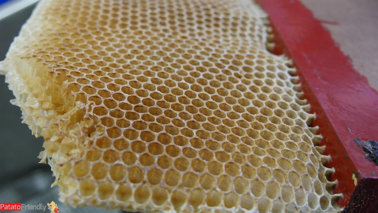 Da assaggiare in Sicilia - il miele di Zafferana Etnea