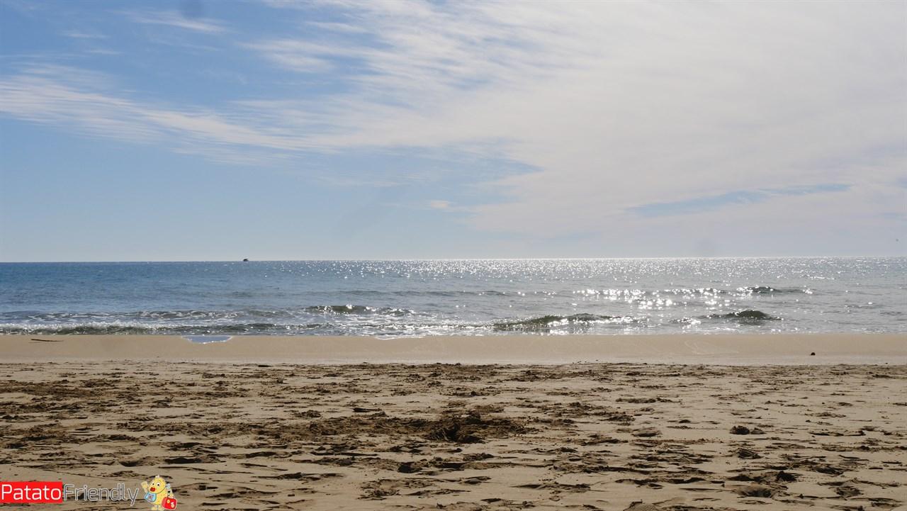 [cml_media_alt id='10849']Hotel Jonio - Lido di Noto - La spiaggia[/cml_media_alt]