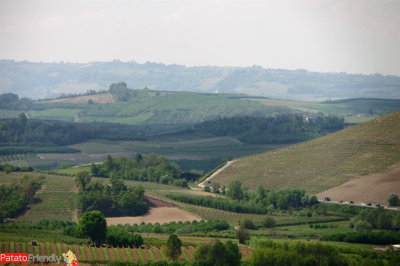 Panorami delle Langhe