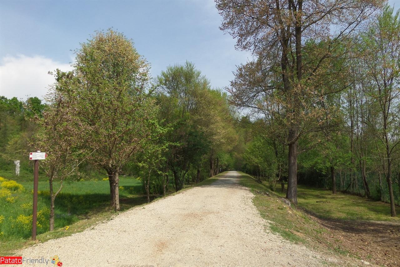 [cml_media_alt id='11229']Una gita al Parco della Mandria - i viali[/cml_media_alt]