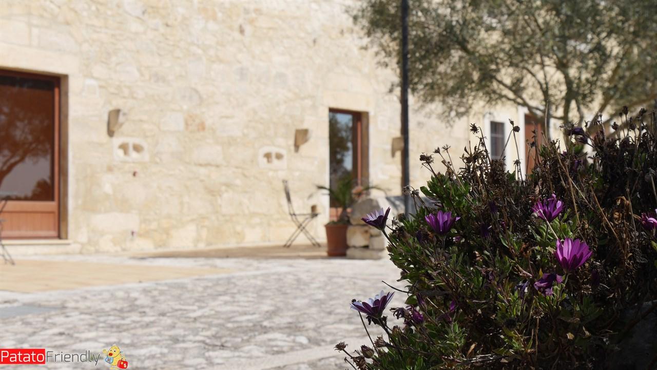 [cml_media_alt id='10646']Artemisia Resort - Ragusa[/cml_media_alt]