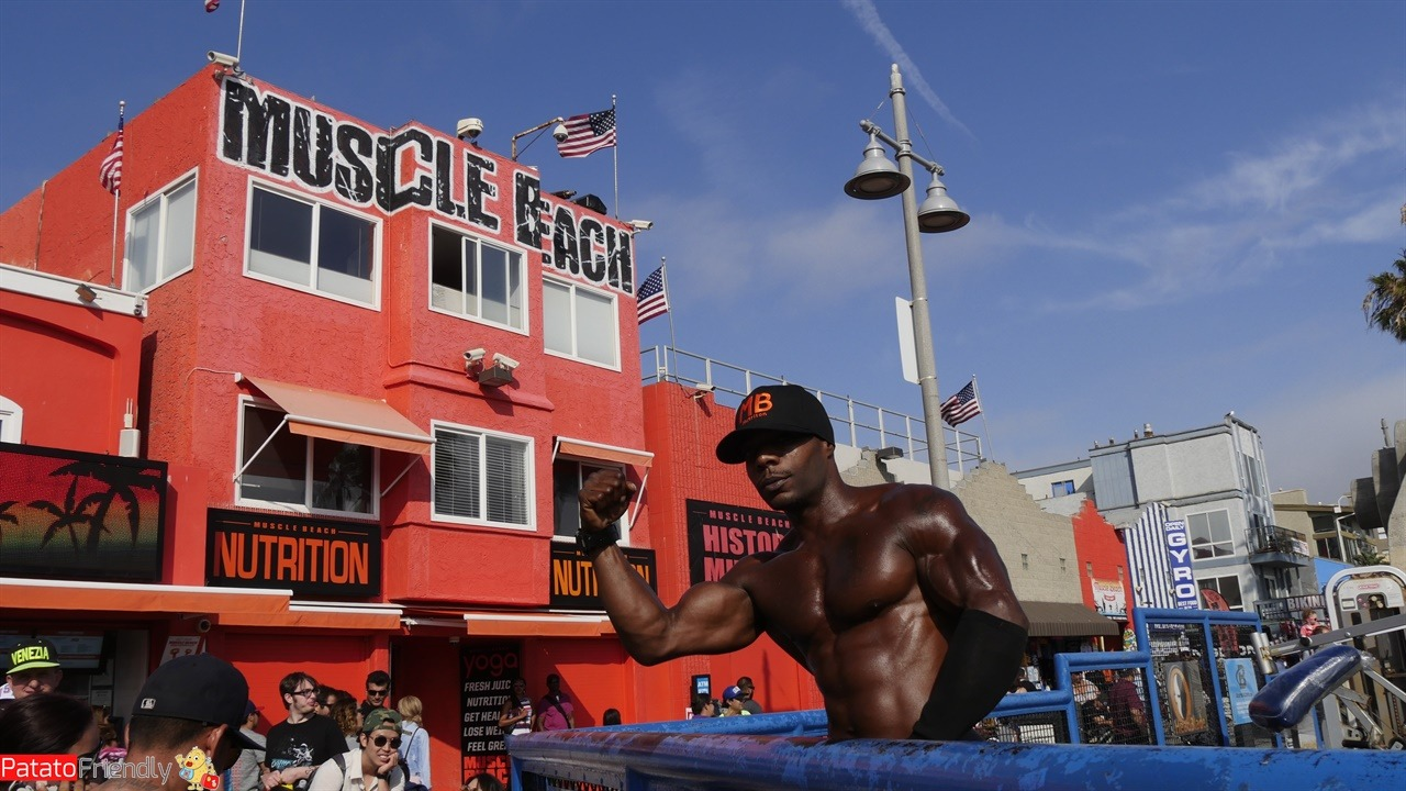 [cml_media_alt id='11377']Los Angeles - Muscle Beach[/cml_media_alt]
