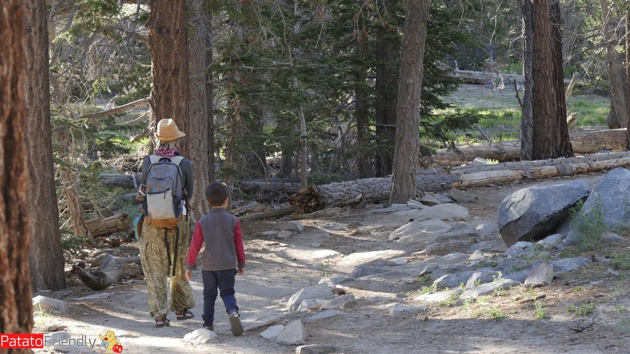 Da fare a Palm Springs coi bambini - San Jacinto