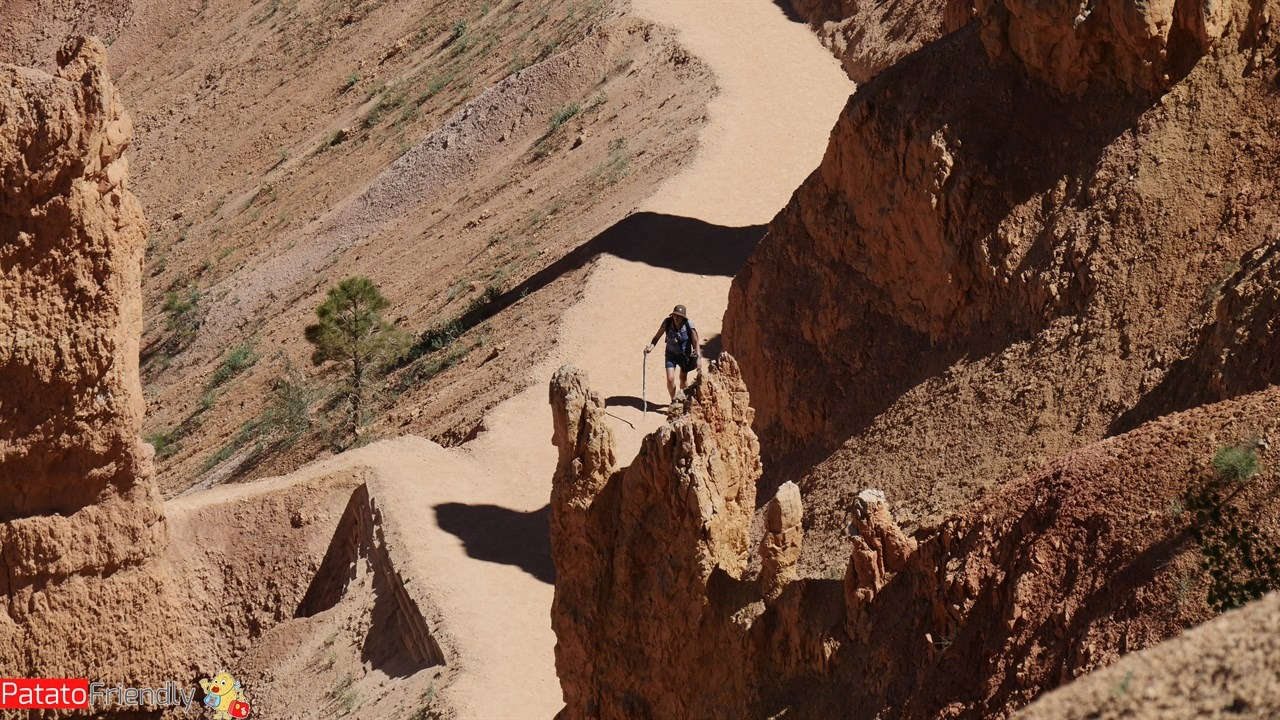 [cml_media_alt id='12076']Vedere in Bryce Canyon in camper[/cml_media_alt]
