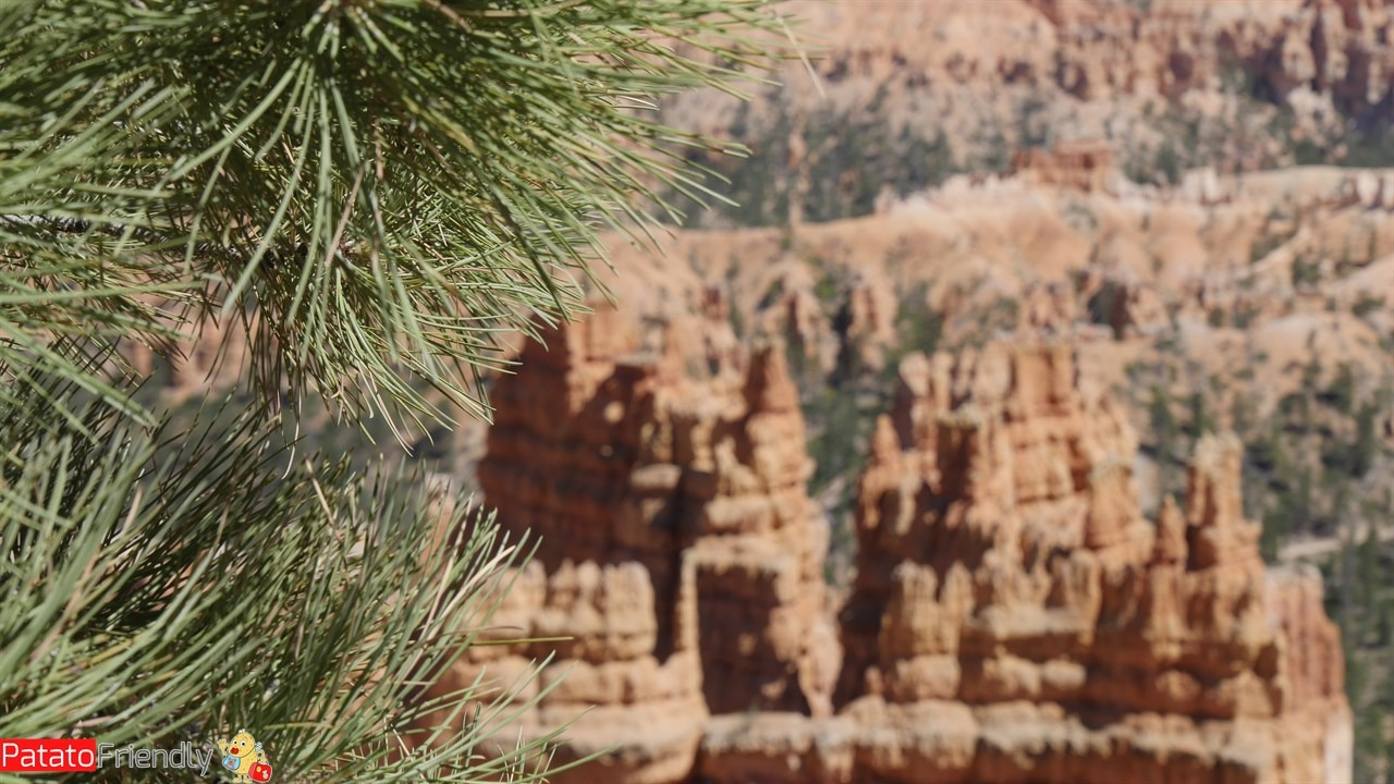 [cml_media_alt id='12080']Visitare il Bryce Canyon National Park[/cml_media_alt]