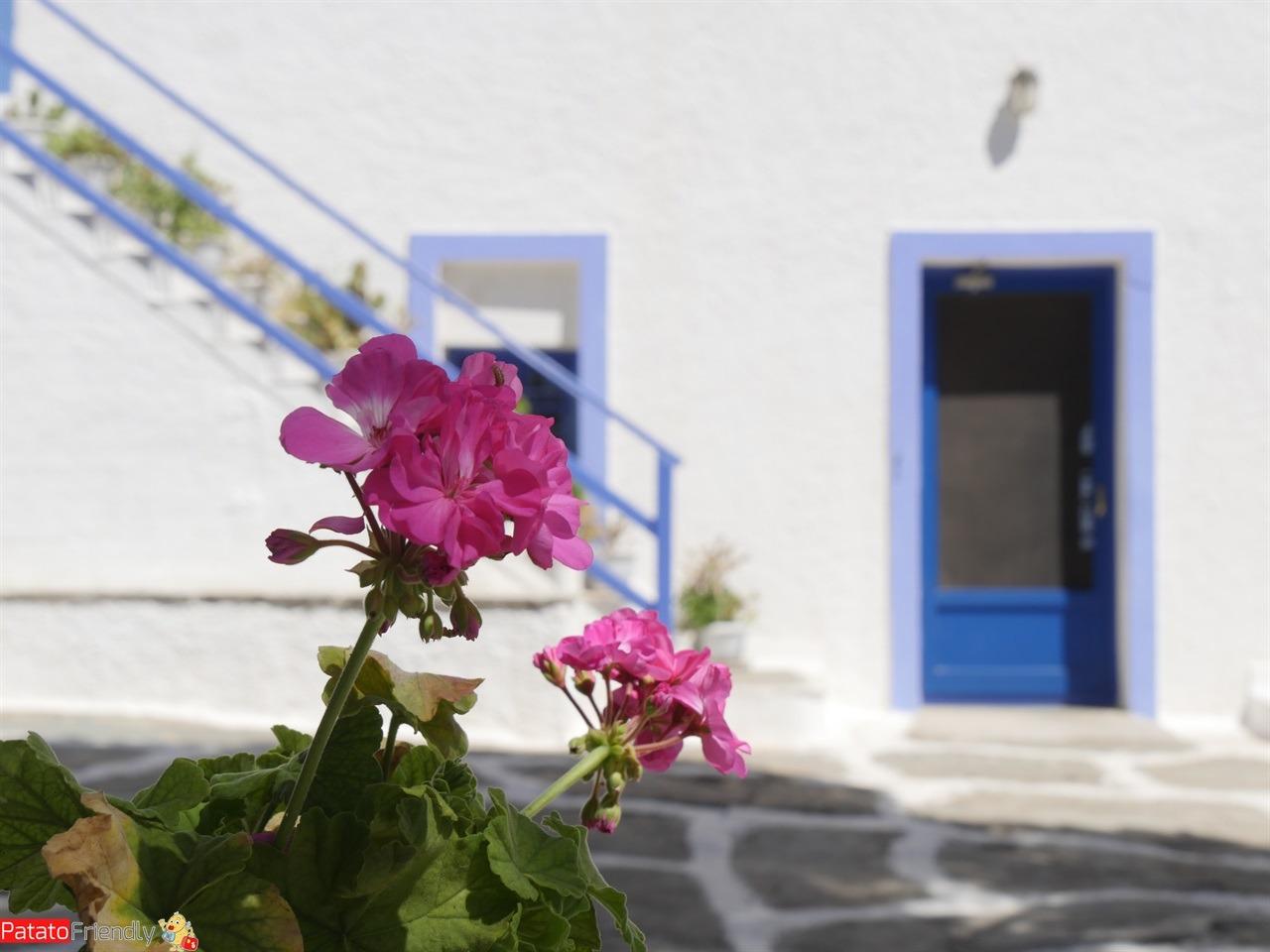 [cml_media_alt id='12224']Isola di Kea - Il monastero di Kastriani[/cml_media_alt]