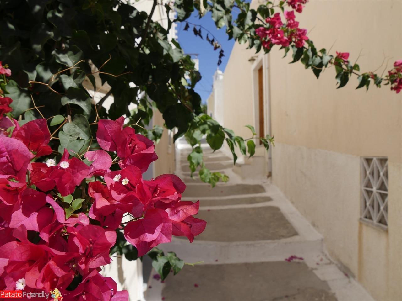 [cml_media_alt id='12233']Isola di Kea - Le tipiche viuzze del borgo di Ioulida[/cml_media_alt]
