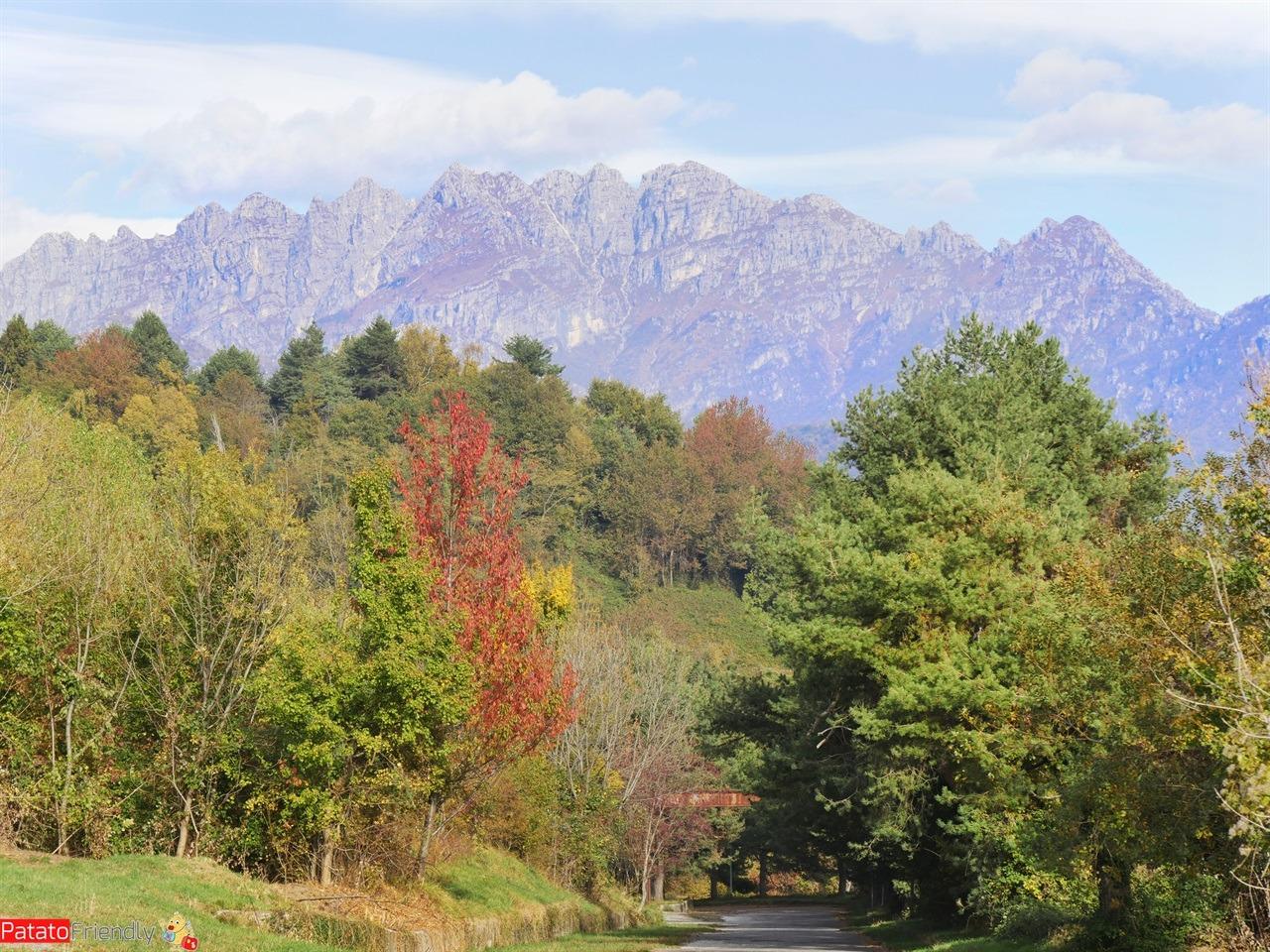 [cml_media_alt id='12713']Foliage in Brianza a Consonno_Snapseed[/cml_media_alt]