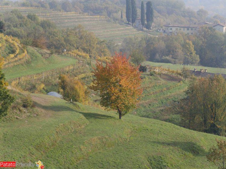 Gita in Lombardia nel Parco del Curone