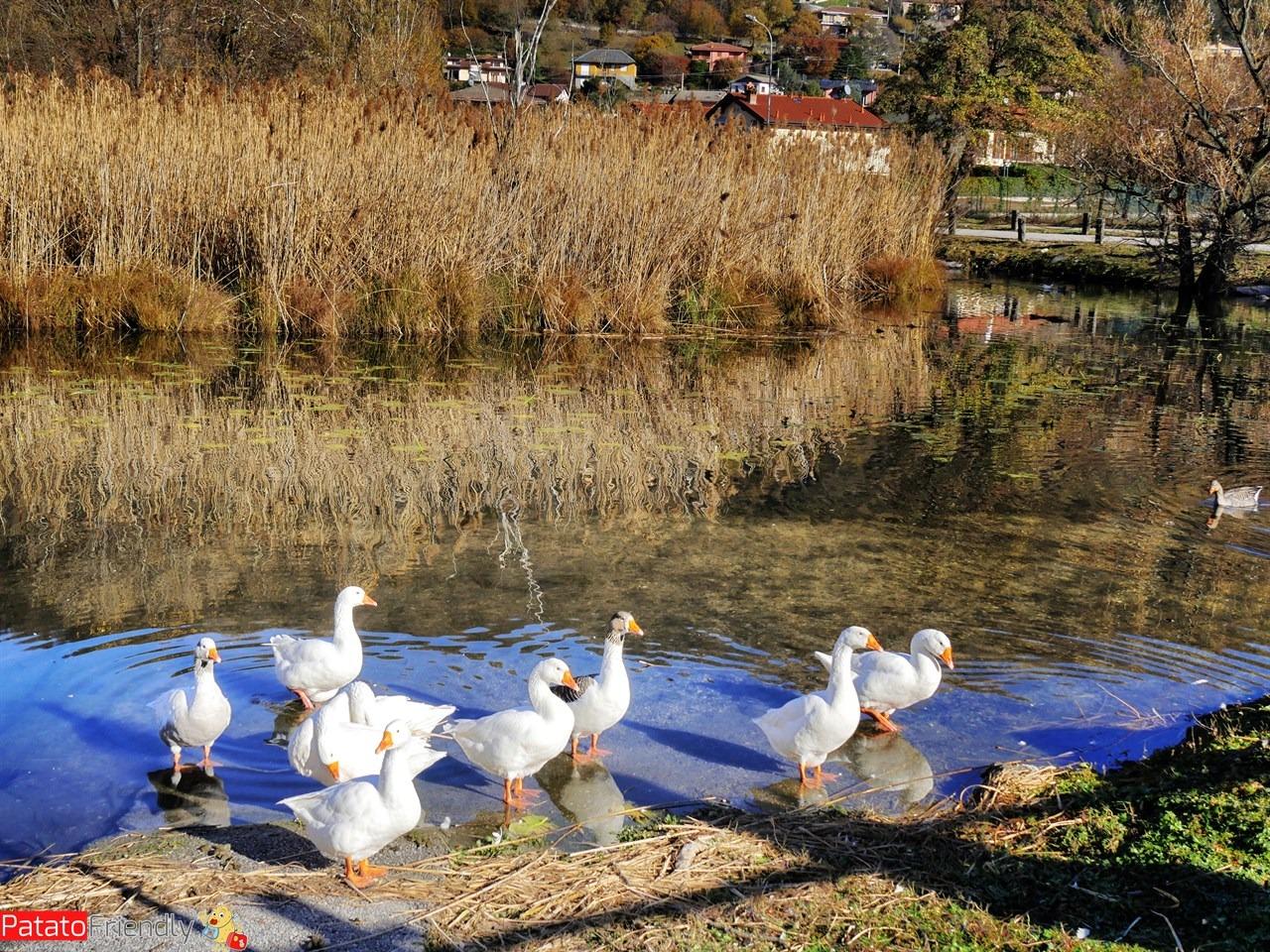 Lago del Segrino - cosa fare