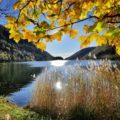 Lago del Segrino - passeggiate coi bambini in Lombardia