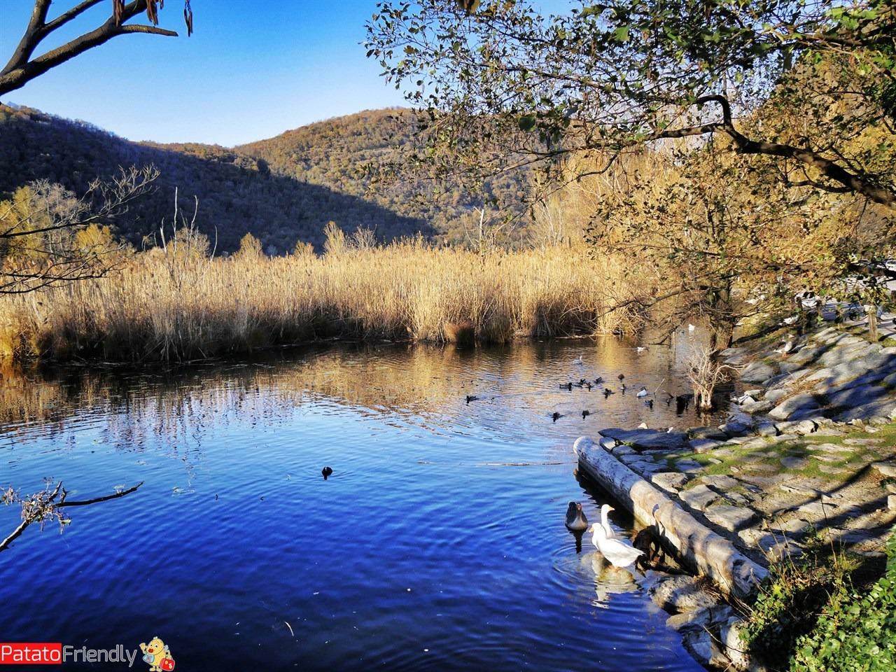 Gita al lago del Segrino