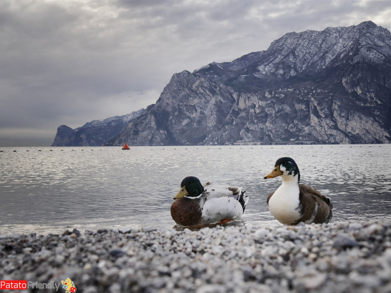 [cml_media_alt id='13024']Vacanza nel Garda Trentino: Torbole [/cml_media_alt]