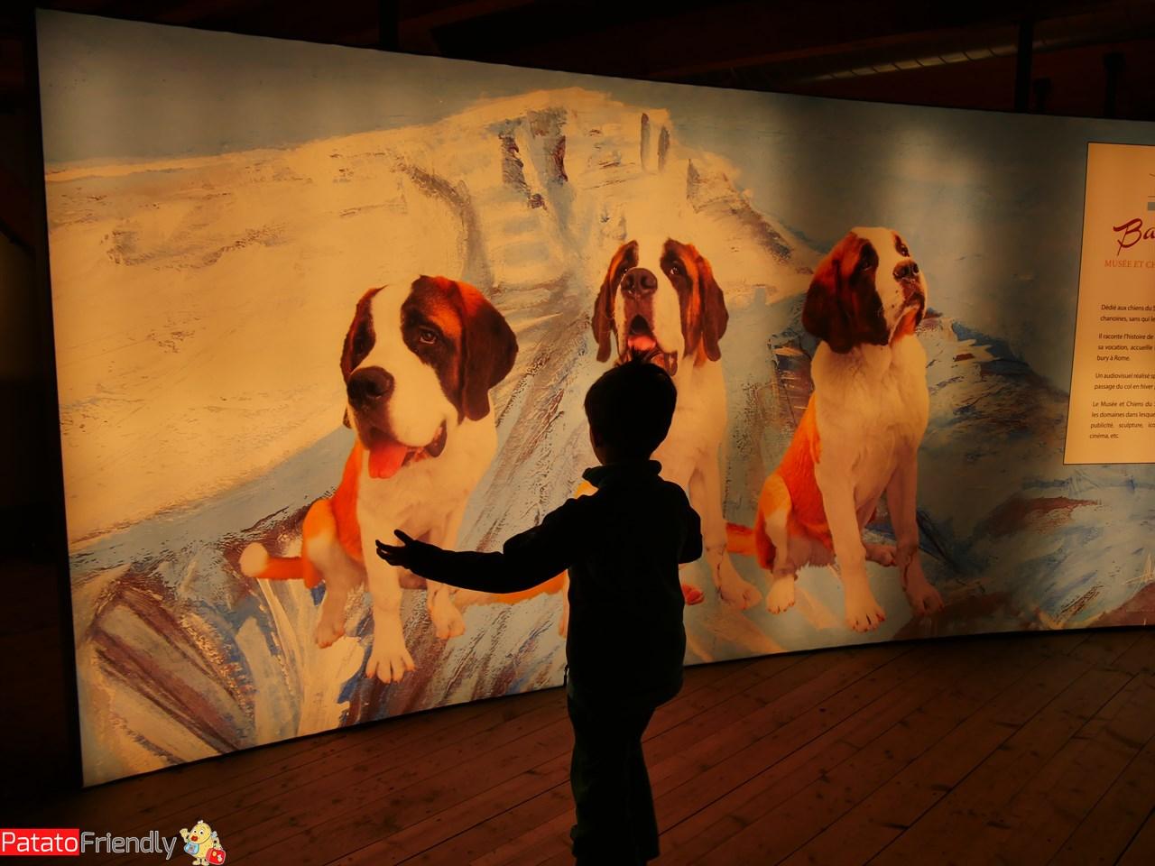 [cml_media_alt id='13320']Visitare il Museo Barryland[/cml_media_alt]