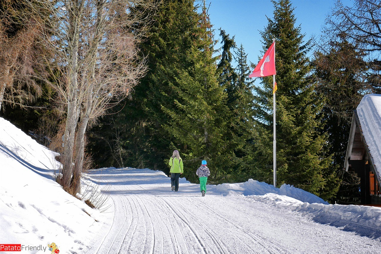 Alestch Arena Vallese passeggiata nella neve in Svizzera