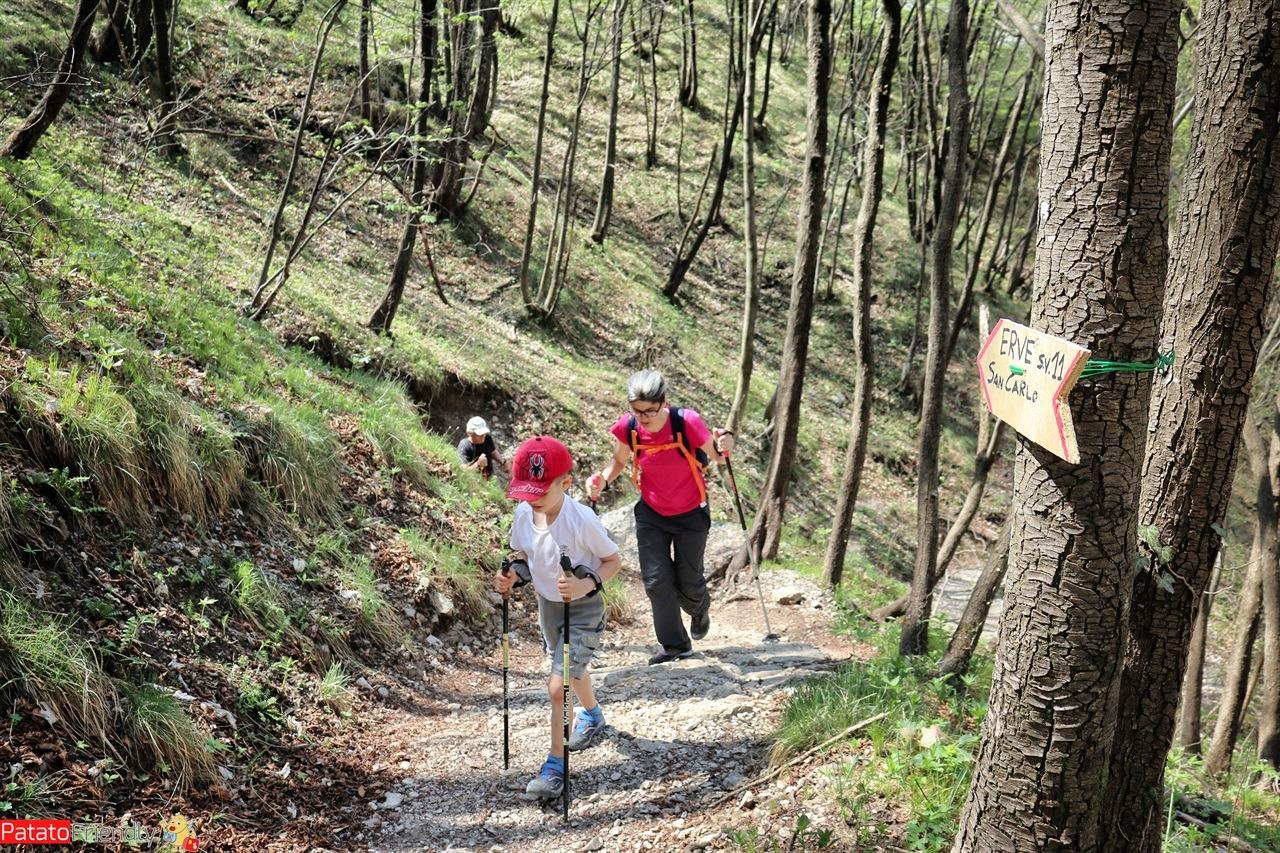 [cml_media_alt id='14047']Trekking in Lombardia - Da Erve a Capanna Monza[/cml_media_alt]