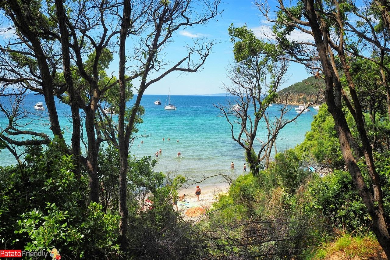 [cml_media_alt id='14427']Itinerario in Maremma - la spiaggia di Cala Violina[/cml_media_alt]