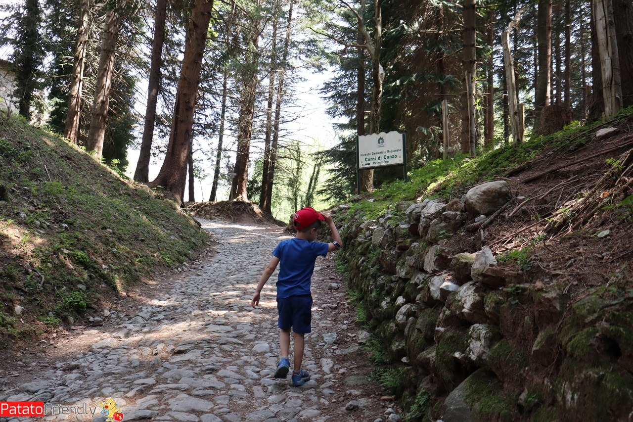 [cml_media_alt id='14180']Sul sentiero verso Prim'Alpe[/cml_media_alt]
