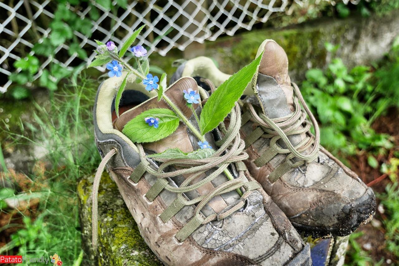[cml_media_alt id='14502']Le scarpe per il Cammino di Santiago - scarpe abbandonate lungo il cammino[/cml_media_alt]
