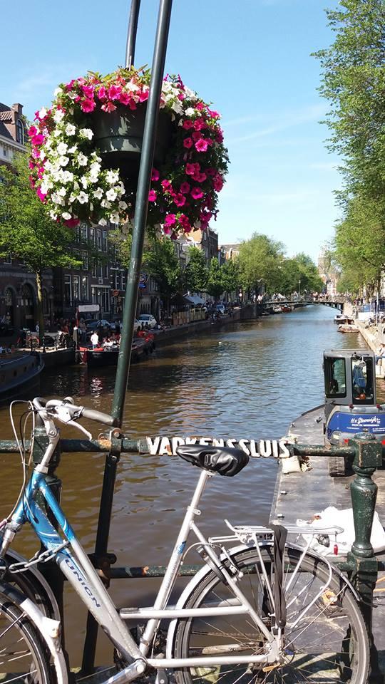 [cml_media_alt id='14638']Olanda in famiglia con la bici[/cml_media_alt]