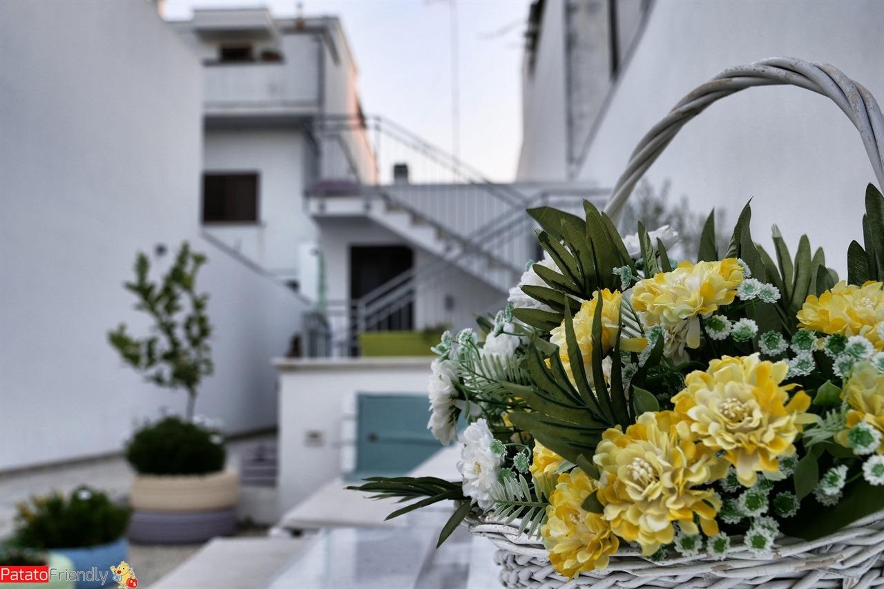 [cml_media_alt id='14742']Il B&B La Casa di Anita in Salento[/cml_media_alt]