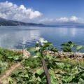 Itinerario in Albania vicino a Pogradec Lin vista sul lago di Ohrid