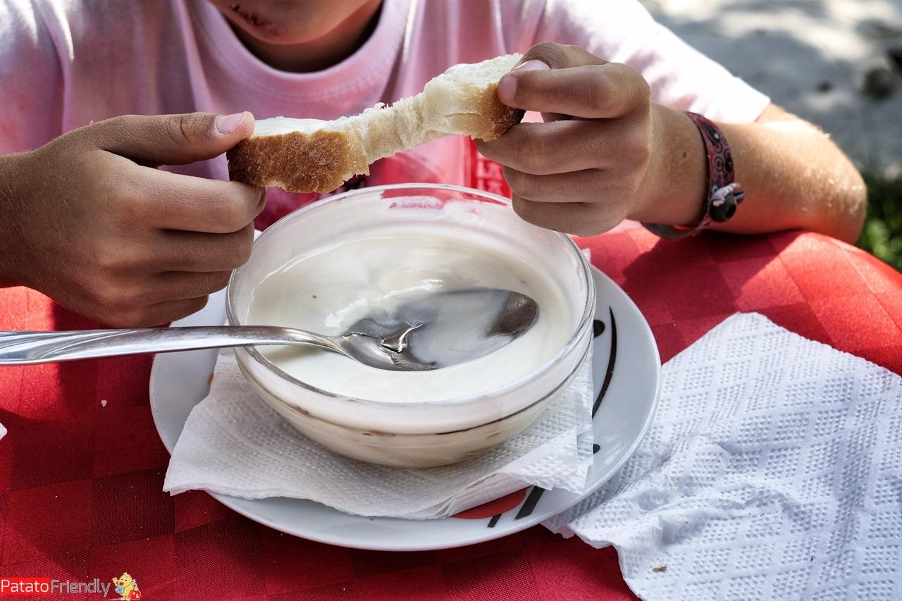 Cosa mangiare in Albania: lo yogurt del Parco Nazionale del Llogara