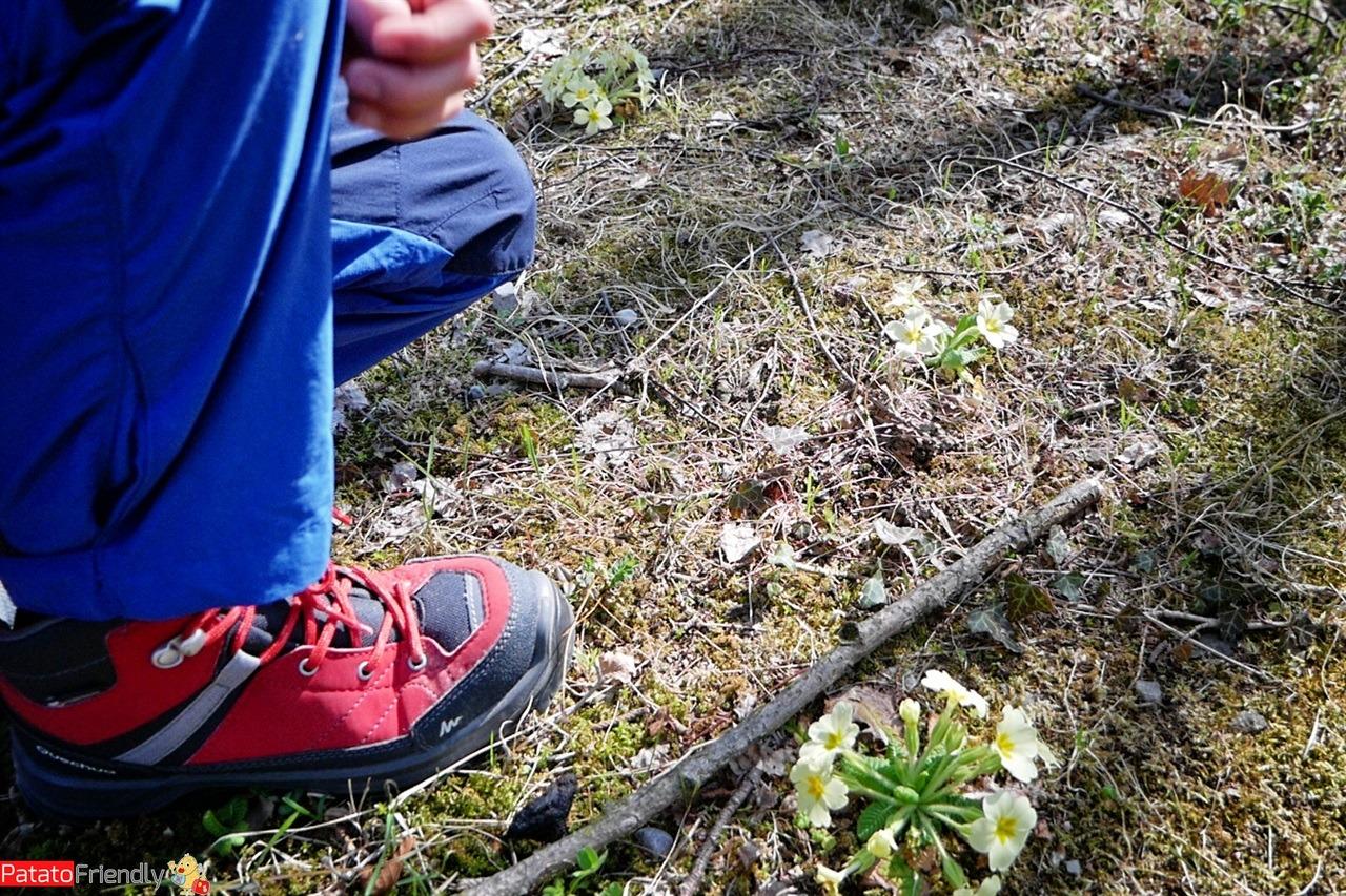 Trekking con bambini in Lombardia - i Piani d'Erna