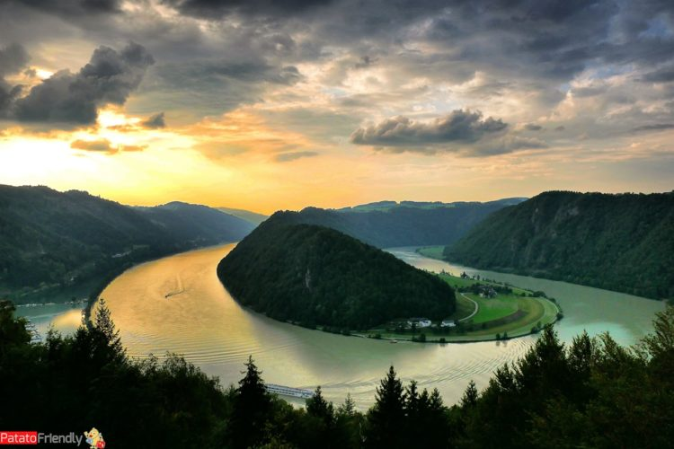 Schlongener in Austria